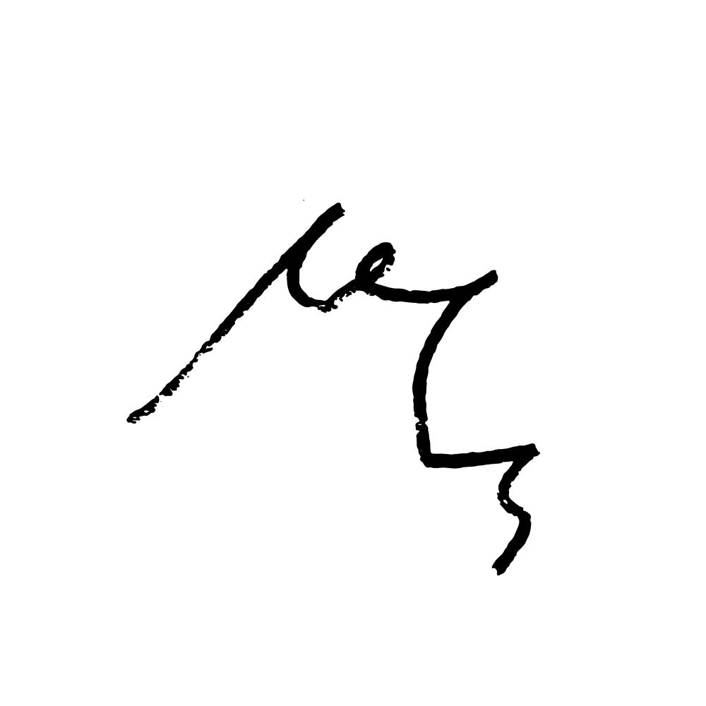 disturbances-logo2