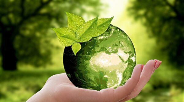 Hand holding a green glass globe