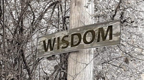 Sign with word 'wisdom' on a pole