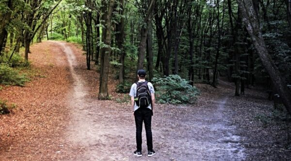 Hiker standing at crossroads of two walking paths in forest